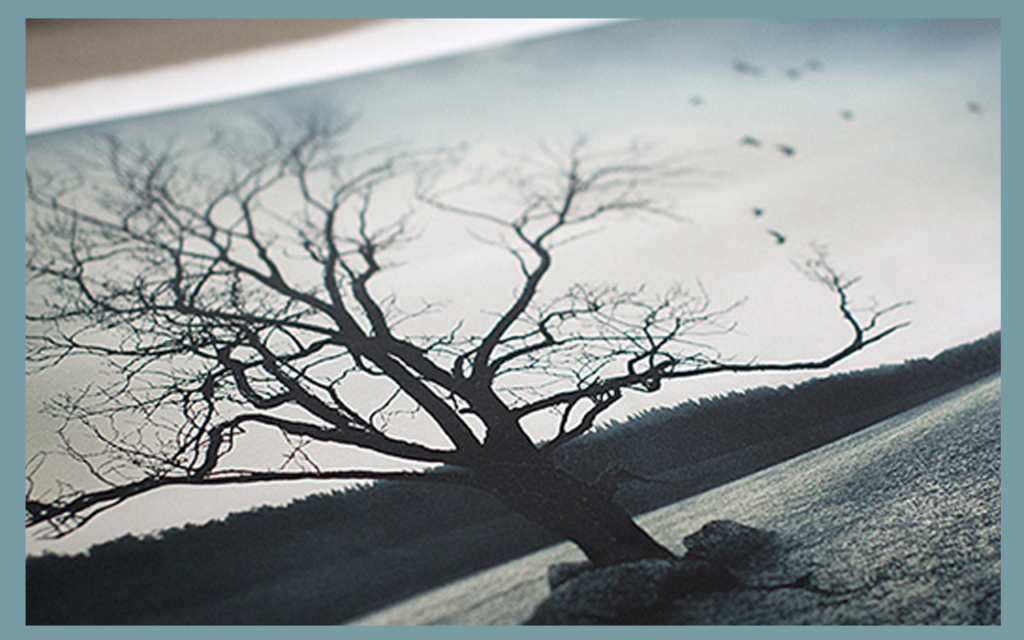 photography printing